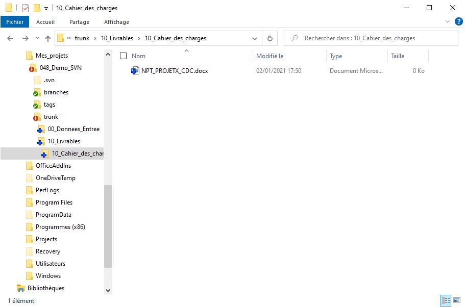 TortoiseSVN - Ajouter des fichiers 4/4