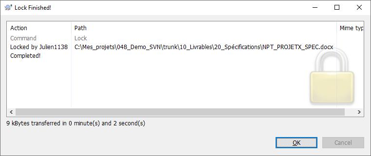 TortoiseSVN - Verrouiller un fichier 3/3