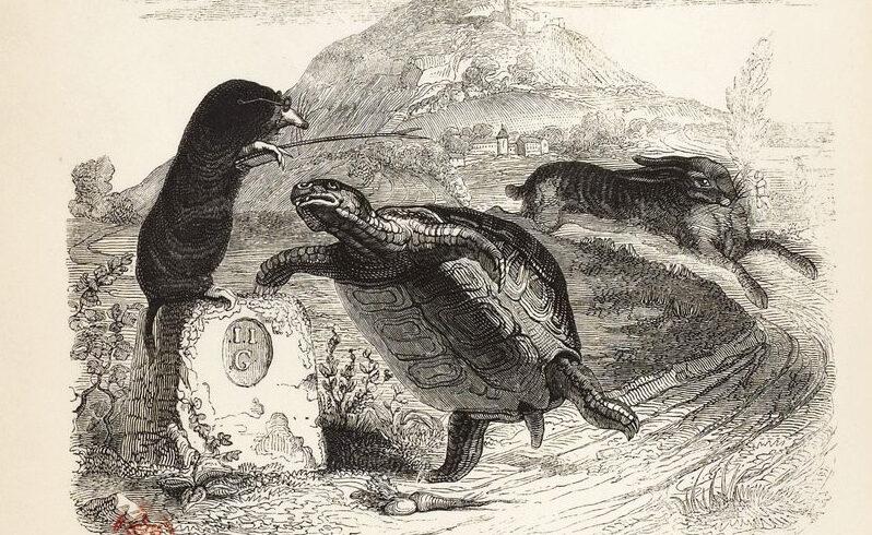Gravure du lièvre et de la tortue